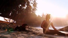 Signora ed il cane nero si siedono sulla spiaggia sabbiosa nell'ambito dei raggi luminosi del sole video d archivio