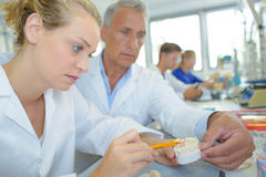 Signora guidante del supervisore in protesi dentarie di fabbricazione Immagine Stock