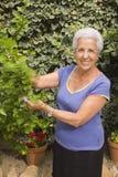 Signora maggiore nel suo giardino Immagini Stock Libere da Diritti