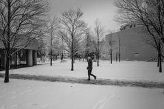 Signora nella caduta della neve Fotografia Stock Libera da Diritti