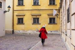 Signora In Red Fotografia Stock