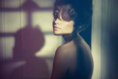 Signora sensuale nell'interno classico Fotografie Stock Libere da Diritti
