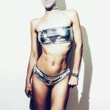 Signora sexy del partito d'argento Stile di fascino Immagini Stock Libere da Diritti