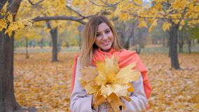 Signora sveglia In Beige Coat e giallo arancio Autumn Leaves del mazzo della tenuta della sciarpa Fotografia Stock Libera da Diritti