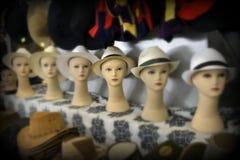 Signora in un cappello Immagini Stock