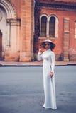 Signora Vietnam Immagini Stock