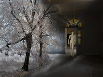 Signora Winter Fotografie Stock Libere da Diritti