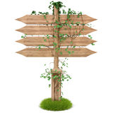 Signpost. Wooden signpost with ivy. isolated on white. with clipping path Stock Photos