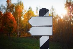 Signpost. On the background of the autumn forest. Selective focus stock images
