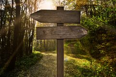 Signpost direction forest lanes parting dirt road. Signpost in the forest in front of a fork royalty free stock photography
