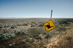 Its Roo Country Royalty Free Stock Photo