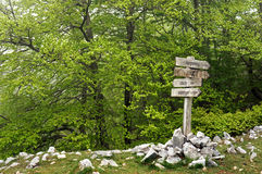 Signpost in the forest Stock Photos