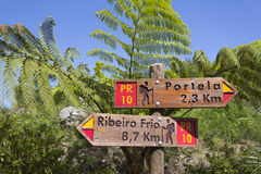 Signpost in Madeira's (Portugal) bush. With fern stock image