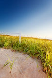 Signpost on path through sand dunes Stock Images