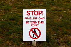Signpost Penguins onli Royalty Free Stock Image