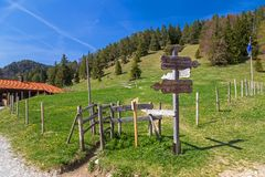 Signpost at Salober alp. In the Bavarian Alps royalty free stock photography