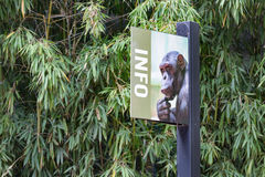 Signpost to the apes. Signpost with information to the apes in a Zoo royalty free stock photography