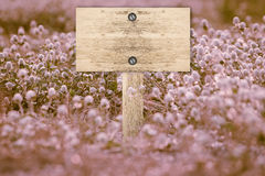 Signpost and vintage Royalty Free Stock Photos