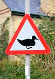 A signpost warning of ducks crossing Stock Photos