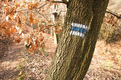 Signposting. Blue tourist sign painted on an oak tree stock photo