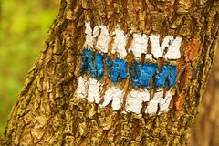 Signposting. Blue tourist sign painted on an oak tree royalty free stock photo