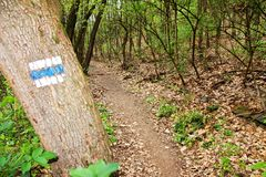 Signposting Stock Images