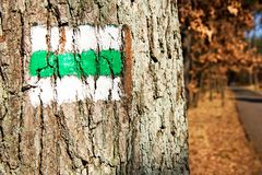 Signposting. Green sign on a tree by the roadside stock photos