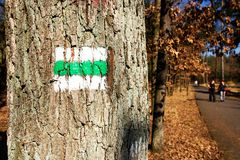 Signposting. Green sign on a tree by the roadside, signposting and people in the background stock images