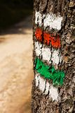 Signposting. Red and green sign on the trunk of the spruce stock photos