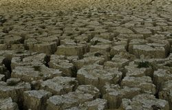 Signs of drought Stock Photography