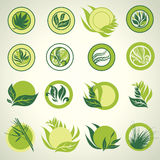 Signs with green leafs which show idea of ecology vector illustration