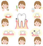 Signs of gum disease. Are swollen or tender gums or other pain in our mouth. Bleeding while brushing. Sensitivity when drink  cold water. Tar Tar and bad breath Stock Images