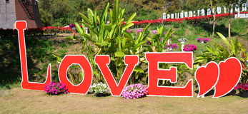 Signs love. On the garden flower background stock photography