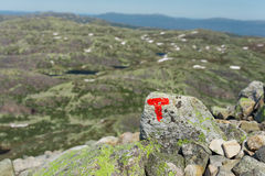 Signs of the Norwegian Trekking Association Royalty Free Stock Photo