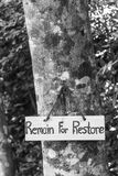 Signs remain for restore. On tree Stock Photo