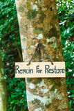 Signs remain for restore on tree. In forest Royalty Free Stock Photos