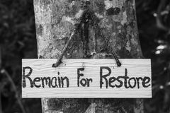 Signs remain for restore on tree. In forest Stock Photography