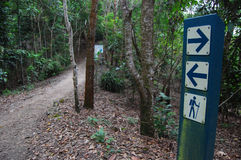 Signs on walking track. Signs on Blue Arrow track to Mount Whitfield, Cairns, Australia Stock Images