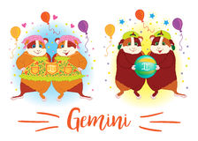 The signs of the zodiac. Guinea pig. Gemini. Stock Image