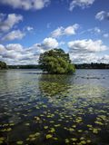 Sigtuna lake in sweden Stock Photos