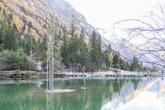 Siguniangshan nationalpark i Sichuan, Kina royaltyfria bilder