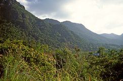 Siharaja Σρι Λάνκα στοκ φωτογραφία με δικαίωμα ελεύθερης χρήσης