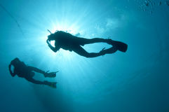 Sihlouetted scuba divers. Shilouetted scuba divers swim in the deep blue ocean Royalty Free Stock Image