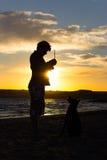 Sihouette de chien et de centre serveur Photos libres de droits