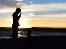 Sihouette de chien et de centre serveur Image libre de droits