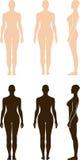 Sihouette debout nu de vecteur de femme Photos libres de droits