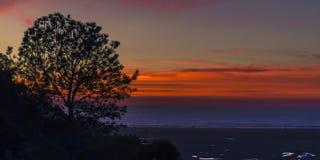 Sihouette degli alberi al tramonto nella laguna di San Elijo fotografia stock libera da diritti
