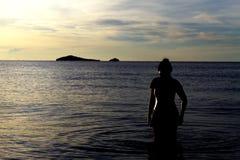 Sihouette do viajante Foto de Stock