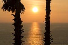 Sihouette-Sonnenuntergang Lizenzfreie Stockbilder