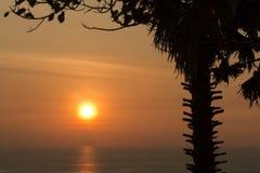 Sihouette-Sonnenuntergang Lizenzfreie Stockfotos